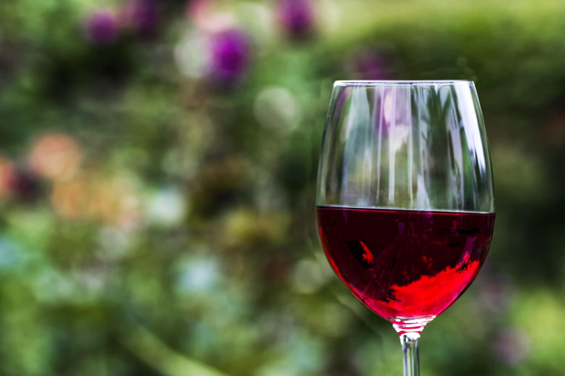 Wijn Spreekwoorden En Citaten